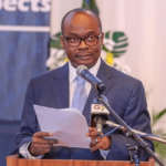 The economy is on a rebound with a sustained momentum - BOG