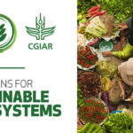 African gov'ts urged to pay attention to the impact of the 'Triple Cs' on food systems
