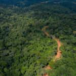 Ghana-China Sinohydro deal poses environmental and social risks to Ghana's forests- Report