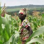 Peasant Farmers Call on Ghana Commodity Exchange to address their Challenges before Scaling up